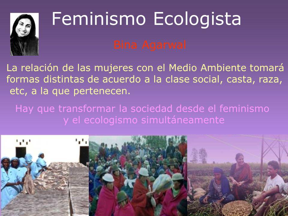 Feminismo Ecologista La relación de las mujeres con el Medio Ambiente tomará formas distintas de acuerdo a la clase social, casta, raza, etc, a la que