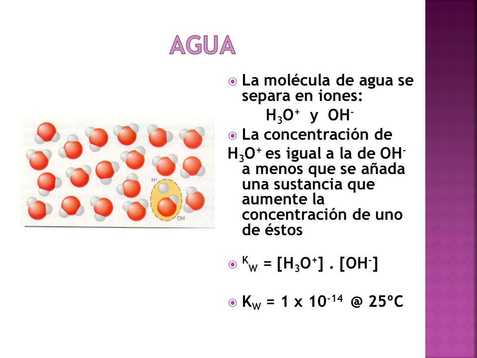 La molécula de agua se separa en iones: H 3 O + y OH - La concentración de H 3 O + es igual a la de OH - a menos que se añada una sustancia que aument