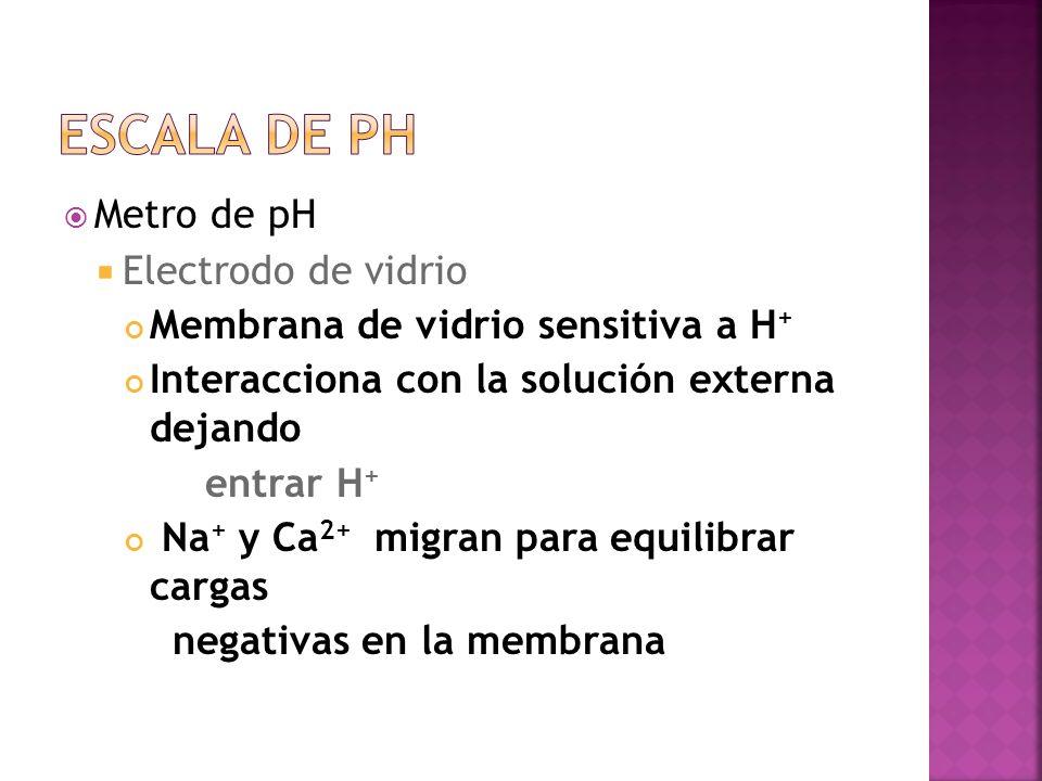 Metro de pH Electrodo de vidrio Membrana de vidrio sensitiva a H + Interacciona con la solución externa dejando entrar H + Na + y Ca 2+ migran para eq