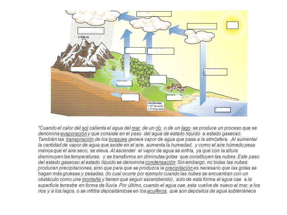Cuando el calor del sol calienta el agua del mar, de un río, o de un lago se produce un proceso que se denomina evaporación y que consiste en el paso