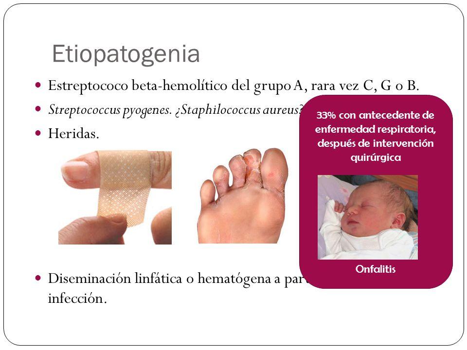 Etiopatogenia Estreptococo beta-hemolítico del grupo A, rara vez C, G o B. Streptococcus pyogenes. ¿Staphilococcus aureus?. Heridas. Diseminación linf