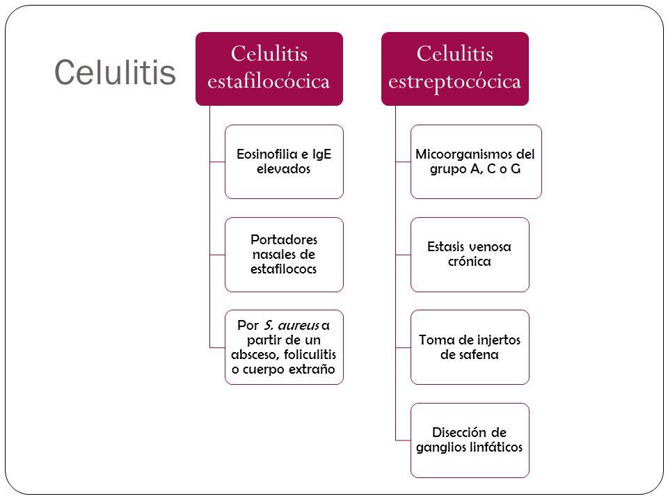 Celulitis Celulitis estafilocócica Eosinofilia e IgE elevados Portadores nasales de estafilococs Por S. aureus a partir de un absceso, foliculitis o c