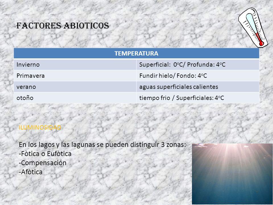 FACTORES ABIOTICOS TEMPERATURA InviernoSuperficial: 0 o C/ Profunda: 4 o C PrimaveraFundir hielo/ Fondo: 4 o C veranoaguas superficiales calientes oto