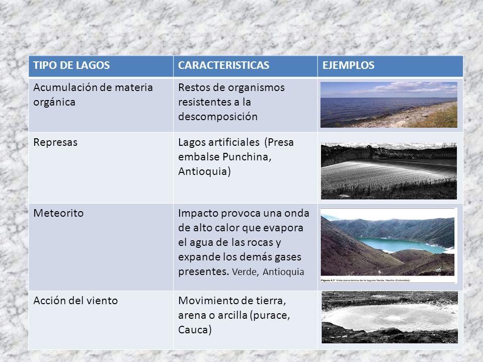 TIPO DE LAGOSCARACTERISTICASEJEMPLOS Acumulación de materia orgánica Restos de organismos resistentes a la descomposición RepresasLagos artificiales (
