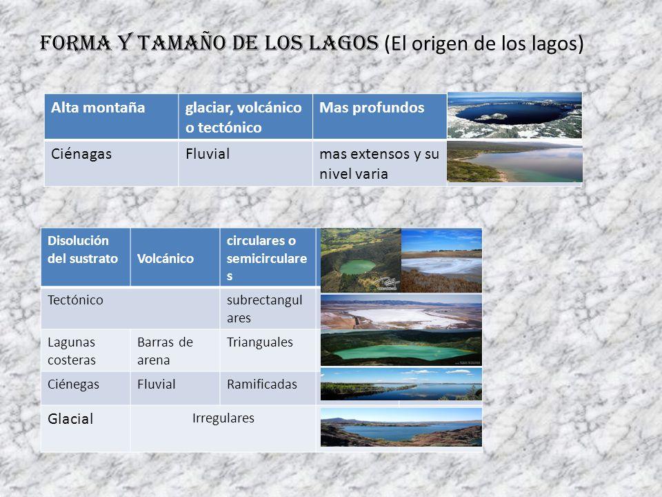Forma y tamaño de los lagos (El origen de los lagos) Alta montañaglaciar, volcánico o tectónico Mas profundos CiénagasFluvialmas extensos y su nivel v