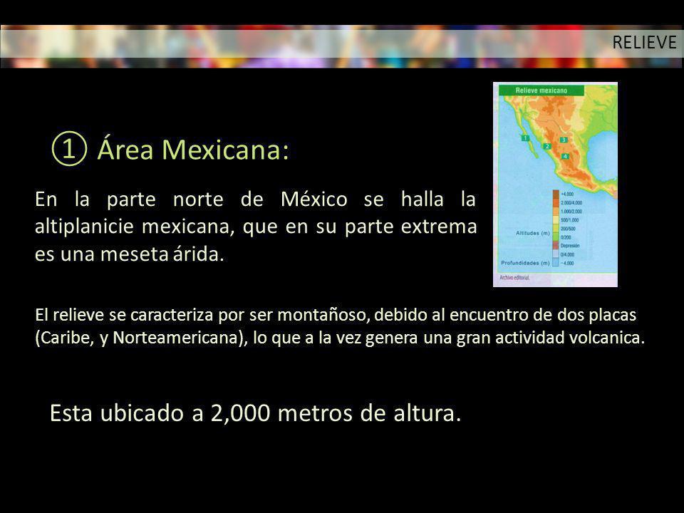 En la parte norte de México se halla la altiplanicie mexicana, que en su parte extrema es una meseta árida. El relieve se caracteriza por ser montaños