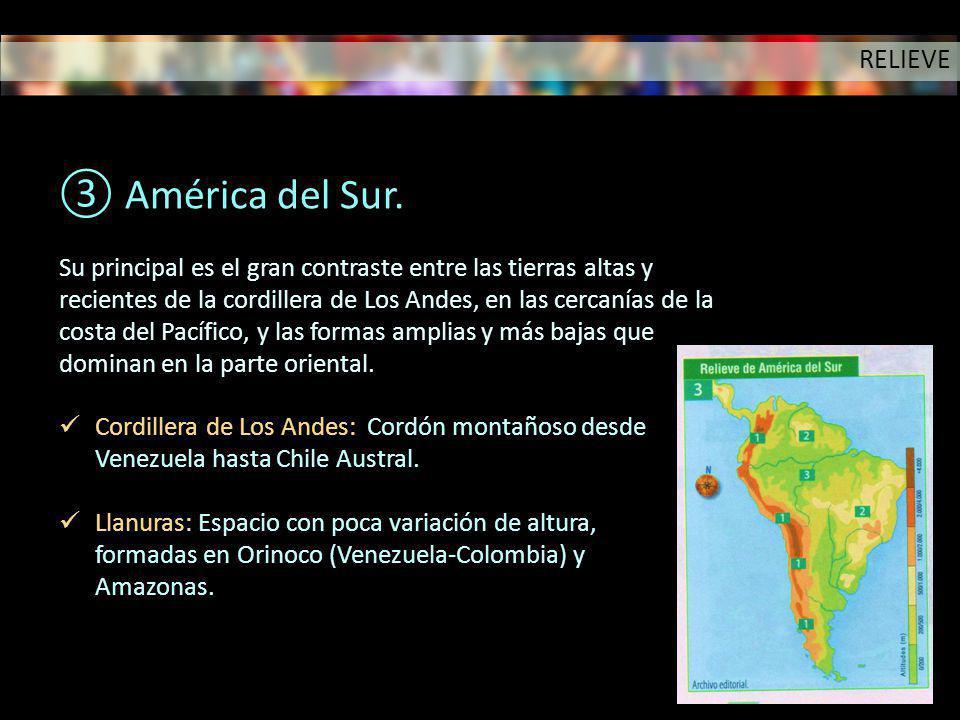 América del Sur. RELIEVE Su principal es el gran contraste entre las tierras altas y recientes de la cordillera de Los Andes, en las cercanías de la c