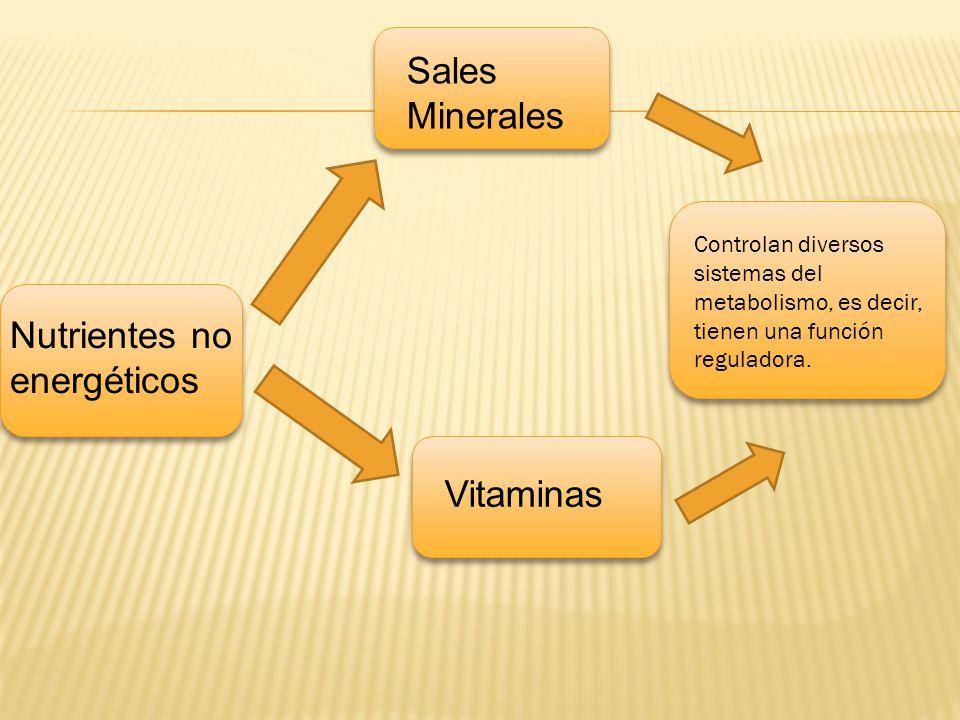 Nutrientes no energéticos Sales Minerales Vitaminas Controlan diversos sistemas del metabolismo, es decir, tienen una función reguladora.