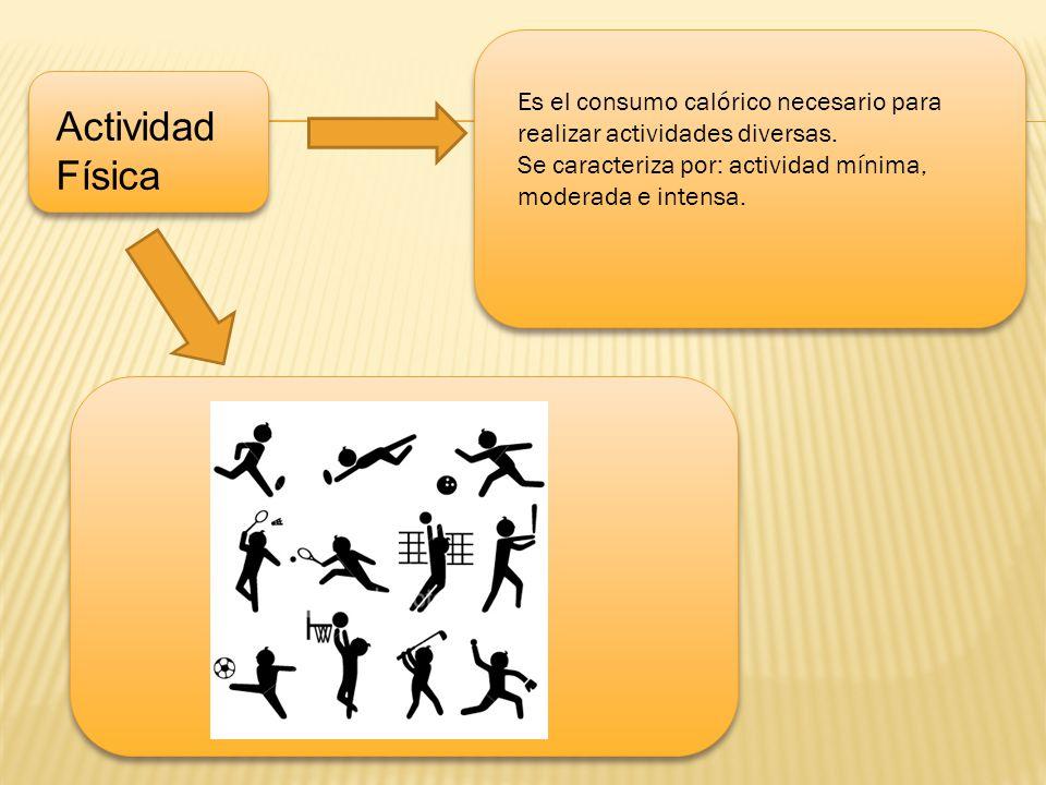 u Actividad Física Es el consumo calórico necesario para realizar actividades diversas. Se caracteriza por: actividad mínima, moderada e intensa.
