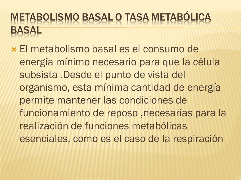 El metabolismo basal es el consumo de energía mínimo necesario para que la célula subsista.Desde el punto de vista del organismo, esta mínima cantidad