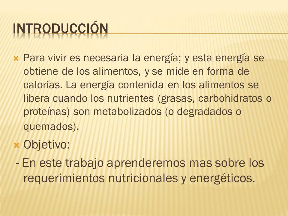 - Requerimientos nutricionales - Nutrientes energéticos - Nutrientes no energéticos - Requerimientos energéticos - Metabolismo basal o Tasa Metabólica basal (TMB)