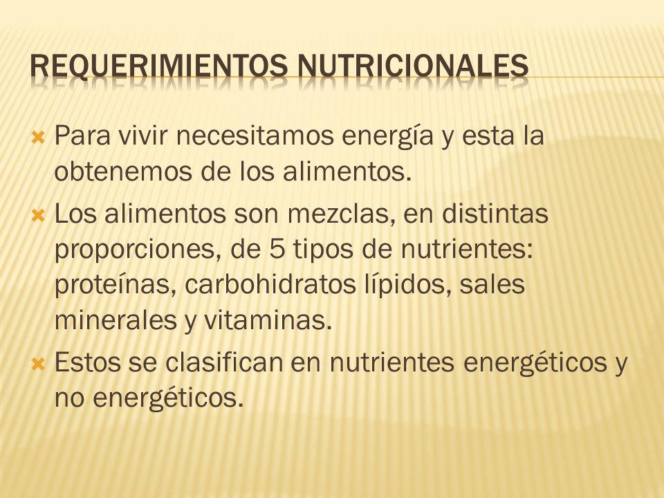 Para vivir necesitamos energía y esta la obtenemos de los alimentos. Los alimentos son mezclas, en distintas proporciones, de 5 tipos de nutrientes: p