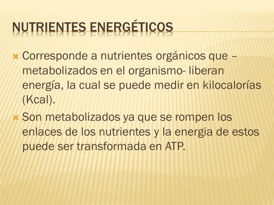 Corresponde a nutrientes orgánicos que – metabolizados en el organismo- liberan energía, la cual se puede medir en kilocalorías (Kcal). Son metaboliza