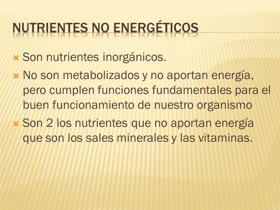 Son nutrientes inorgánicos. No son metabolizados y no aportan energía, pero cumplen funciones fundamentales para el buen funcionamiento de nuestro org