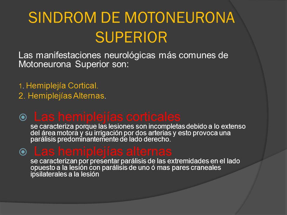 SINDROM DE MOTONEURONA SUPERIOR Las manifestaciones neurológicas más comunes de Motoneurona Superior son: 1. Hemiplejía Cortical. 2. Hemiplejías Alter