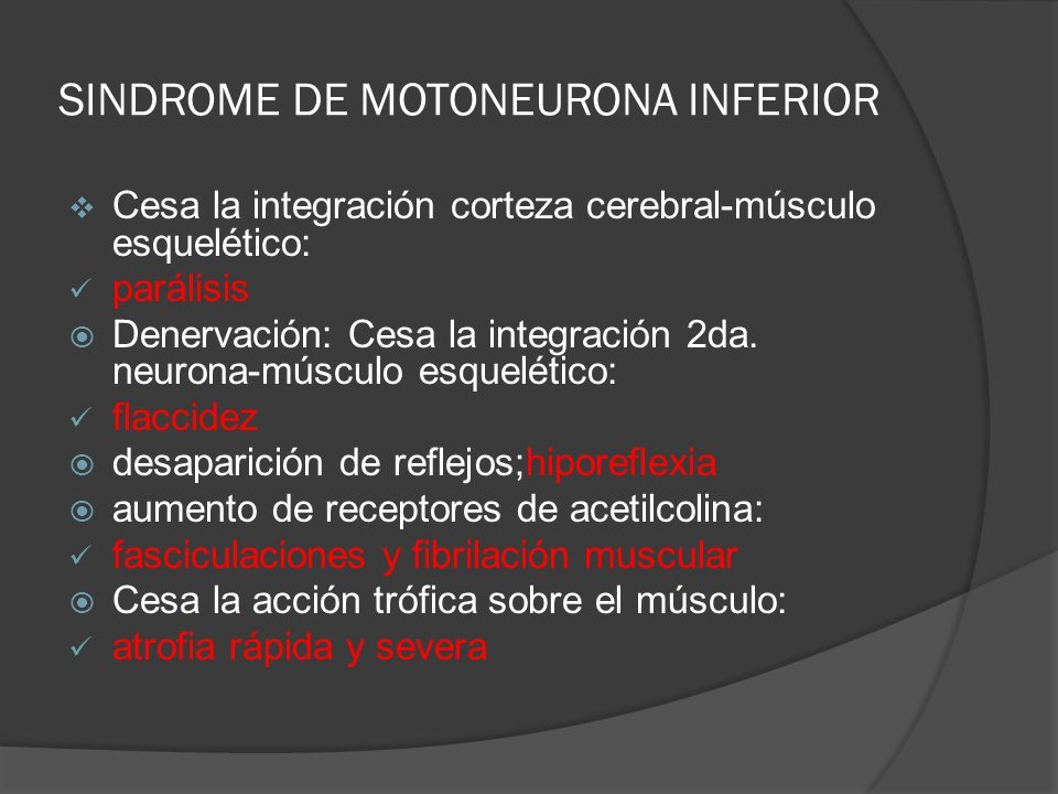 SINDROME DE MOTONEURONA INFERIOR Cesa la integración corteza cerebral-músculo esquelético: parálisis Denervación: Cesa la integración 2da. neurona-mús