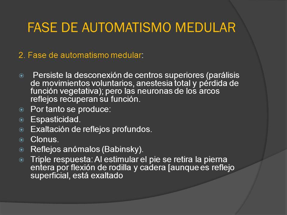 FASE DE AUTOMATISMO MEDULAR 2. Fase de automatismo medular: Persiste la desconexión de centros superiores (parálisis de movimientos voluntarios, anest