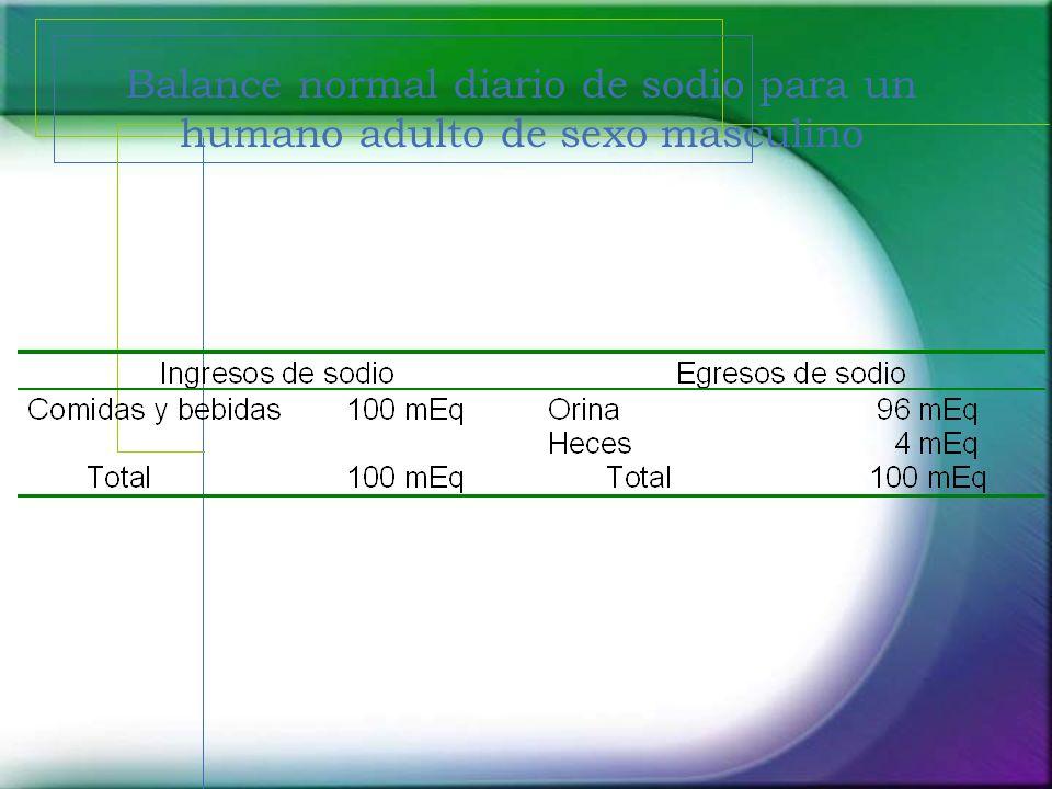 Balance normal diario de sodio para un humano adulto de sexo masculino