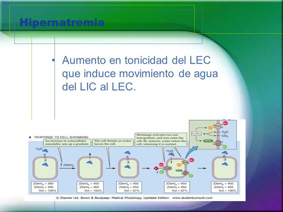 Hipernatremia Aumento en tonicidad del LEC que induce movimiento de agua del LIC al LEC.