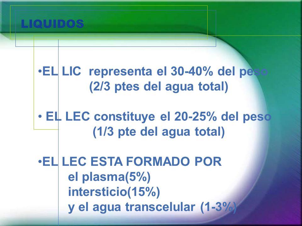 LIQUIDOS EL LIC representa el 30-40% del peso (2/3 ptes del agua total) EL LEC constituye el 20-25% del peso (1/3 pte del agua total) EL LEC ESTA FORM