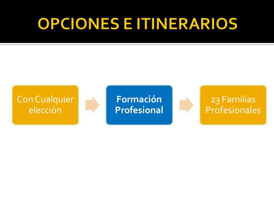 Con Cualquier elección Formación Profesional 23 Familias Profesionales
