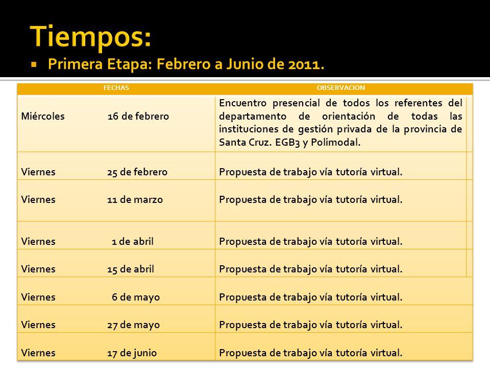 Primera Etapa: Febrero a Junio de 2011.