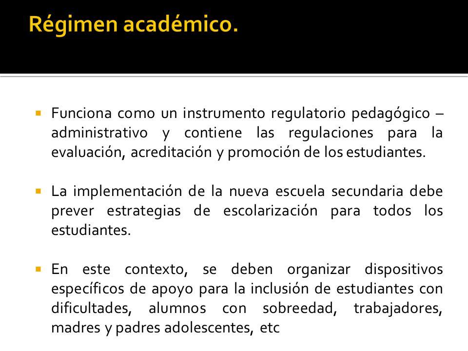 Funciona como un instrumento regulatorio pedagógico – administrativo y contiene las regulaciones para la evaluación, acreditación y promoción de los estudiantes.