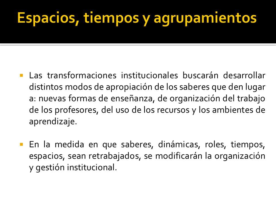 Las transformaciones institucionales buscarán desarrollar distintos modos de apropiación de los saberes que den lugar a: nuevas formas de enseñanza, de organización del trabajo de los profesores, del uso de los recursos y los ambientes de aprendizaje.