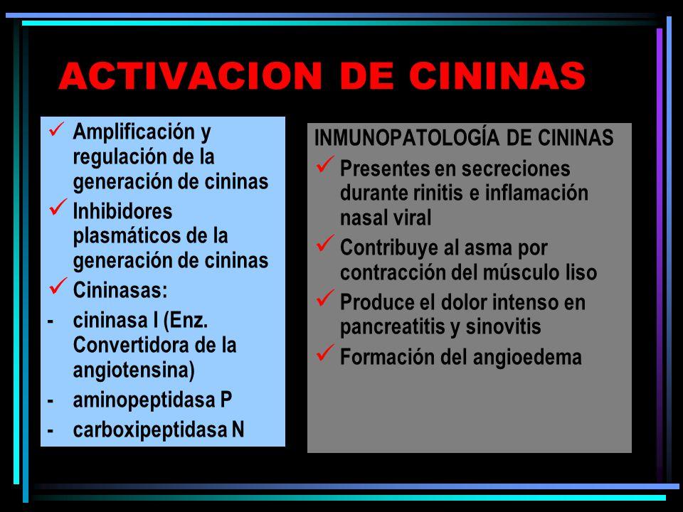 ACTIVACION DE CININAS Amplificación y regulación de la generación de cininas Inhibidores plasmáticos de la generación de cininas Cininasas: -cininasa
