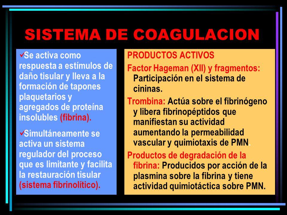 SISTEMA DE COAGULACION Se activa como respuesta a estímulos de daño tisular y lleva a la formación de tapones plaquetarios y agregados de proteína insolubles (fibrina).