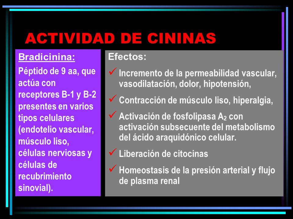 ACTIVACION DE CININAS Amplificación y regulación de la generación de cininas Inhibidores plasmáticos de la generación de cininas Cininasas: -cininasa I (Enz.