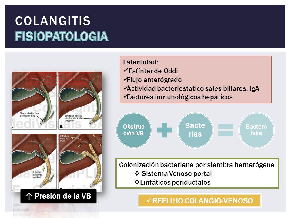 Esterilidad: Esfínter de Oddi Flujo anterógrado Actividad bacteriostático sales biliares. IgA Factores inmunológicos hepáticos Obstruc ción VB Bacte r