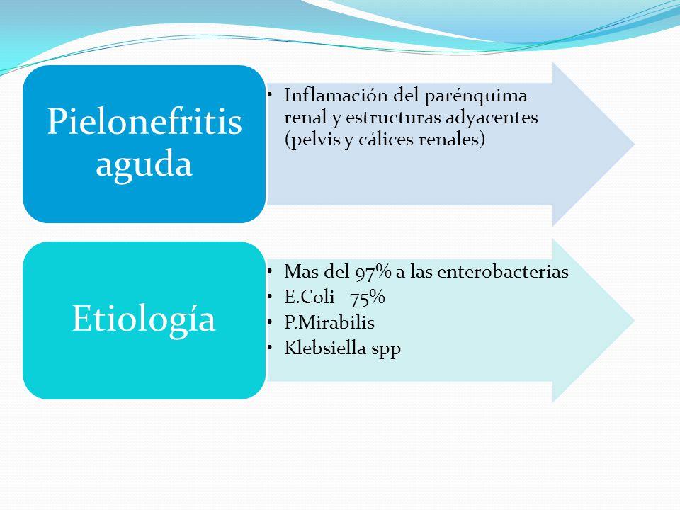 Inflamación del parénquima renal y estructuras adyacentes (pelvis y cálices renales) Pielonefritis aguda Mas del 97% a las enterobacterias E.Coli 75%
