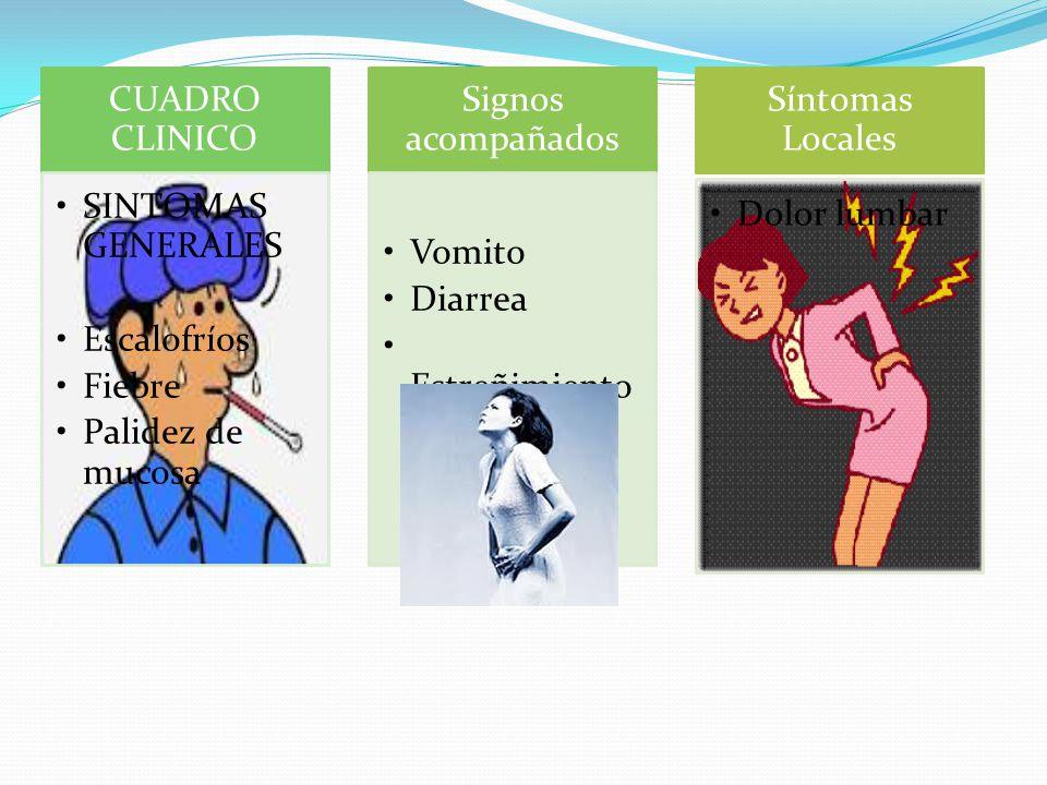 CUADRO CLINICO SINTOMAS GENERALES Escalofríos Fiebre Palidez de mucosa Signos acompañados Vomito Diarrea Estreñimiento Síntomas Locales Dolor lumbar
