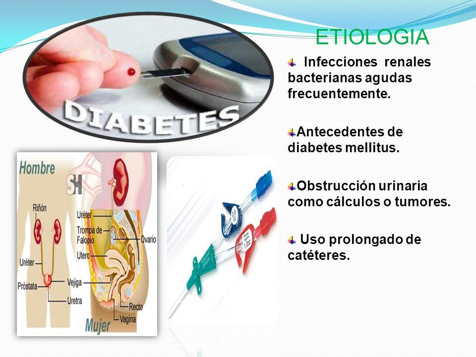 ETIOLOGIA Infecciones renales bacterianas agudas frecuentemente. Antecedentes de diabetes mellitus. Obstrucción urinaria como cálculos o tumores. Uso