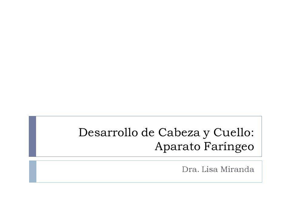 Desarrollo de Cabeza y Cuello: Aparato Faríngeo Dra. Lisa Miranda