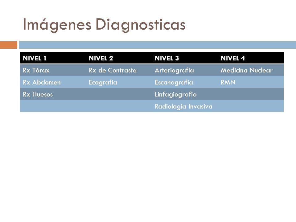 Imágenes Diagnosticas NIVEL 1NIVEL 2NIVEL 3NIVEL 4 Rx TóraxRx de ContrasteArteriografíaMedicina Nuclear Rx AbdomenEcografíaEscanografiaRMN Rx HuesosLi