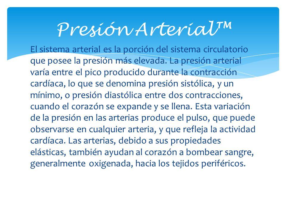 El sistema arterial es la porción del sistema circulatorio que posee la presión más elevada. La presión arterial varía entre el pico producido durante