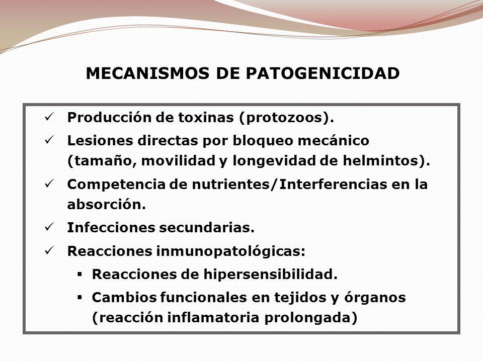 Producción de toxinas (protozoos). Lesiones directas por bloqueo mecánico (tamaño, movilidad y longevidad de helmintos). Competencia de nutrientes/Int