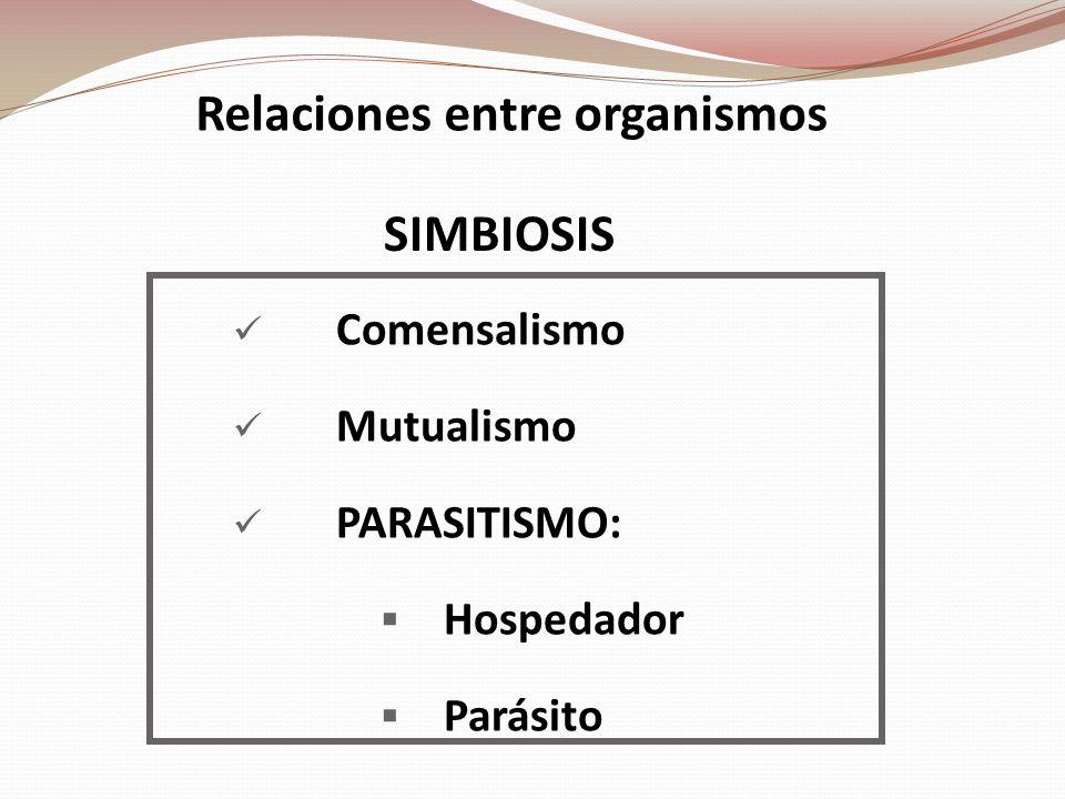 Relaciones entre organismos Comensalismo Mutualismo PARASITISMO: Hospedador Parásito SIMBIOSIS