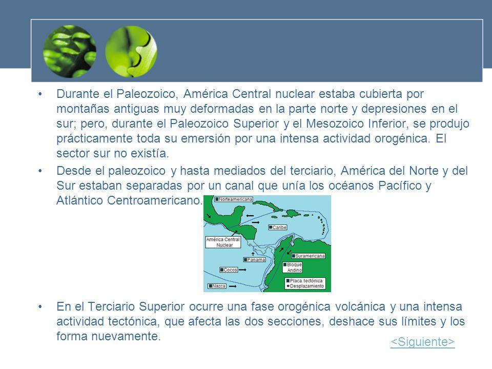 Durante el Paleozoico, América Central nuclear estaba cubierta por montañas antiguas muy deformadas en la parte norte y depresiones en el sur; pero, d