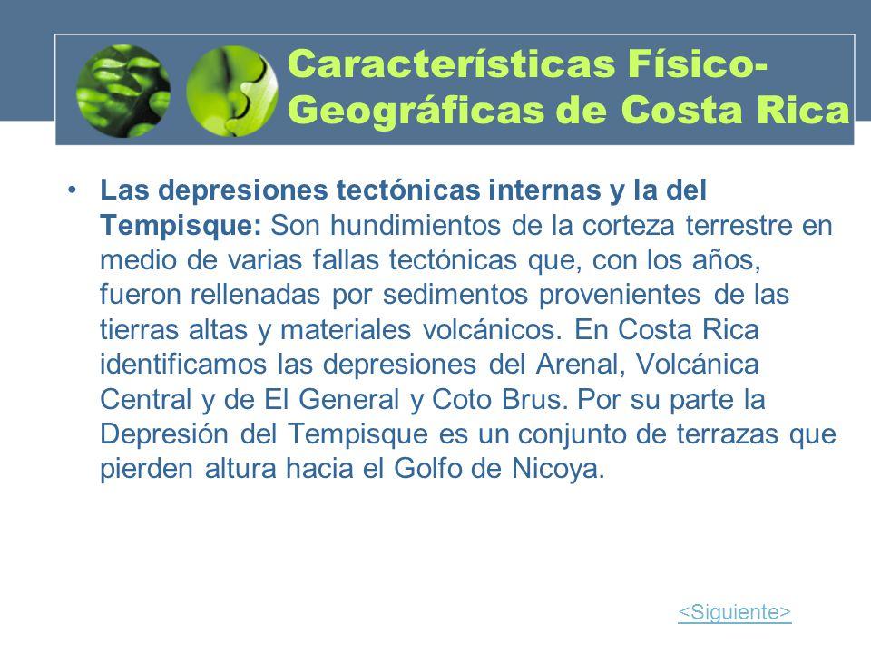 Características Físico- Geográficas de Costa Rica Las depresiones tectónicas internas y la del Tempisque: Son hundimientos de la corteza terrestre en
