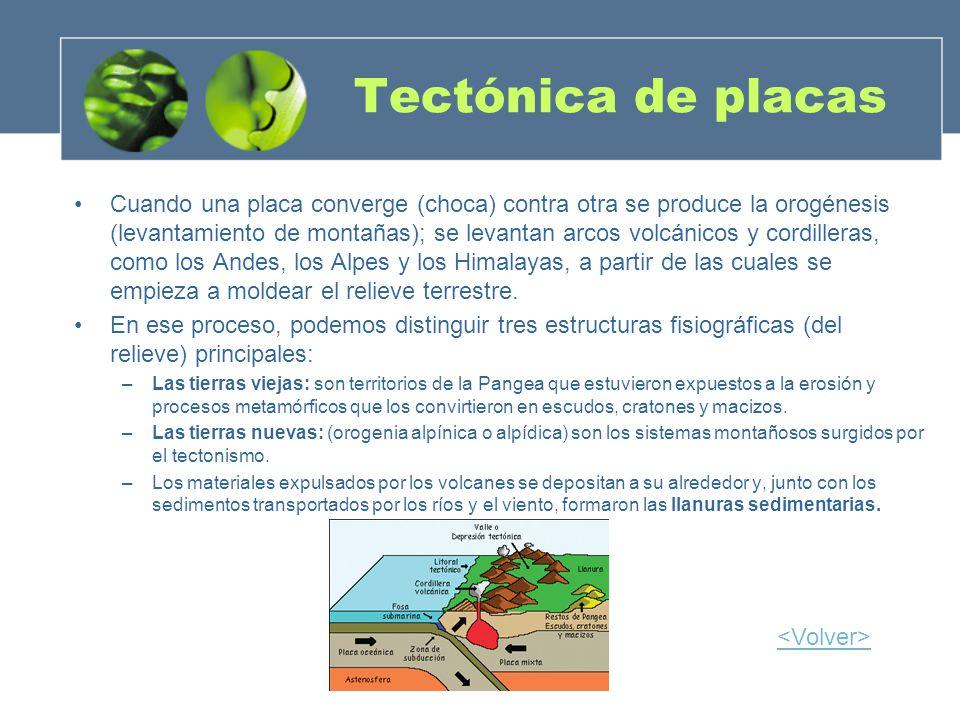 Tectónica de placas Cuando una placa converge (choca) contra otra se produce la orogénesis (levantamiento de montañas); se levantan arcos volcánicos y