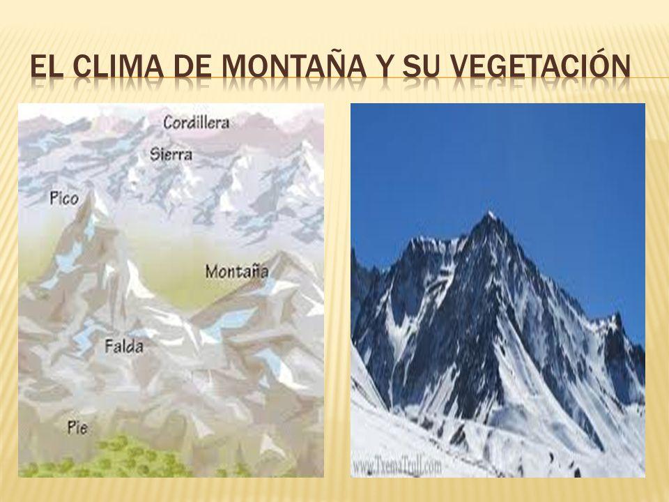 El clima de montaña es propia de las regiones situadas a más de 1000m. De altitud sobre el nivel del mar. Los elevados sistemas montañosos hace que en
