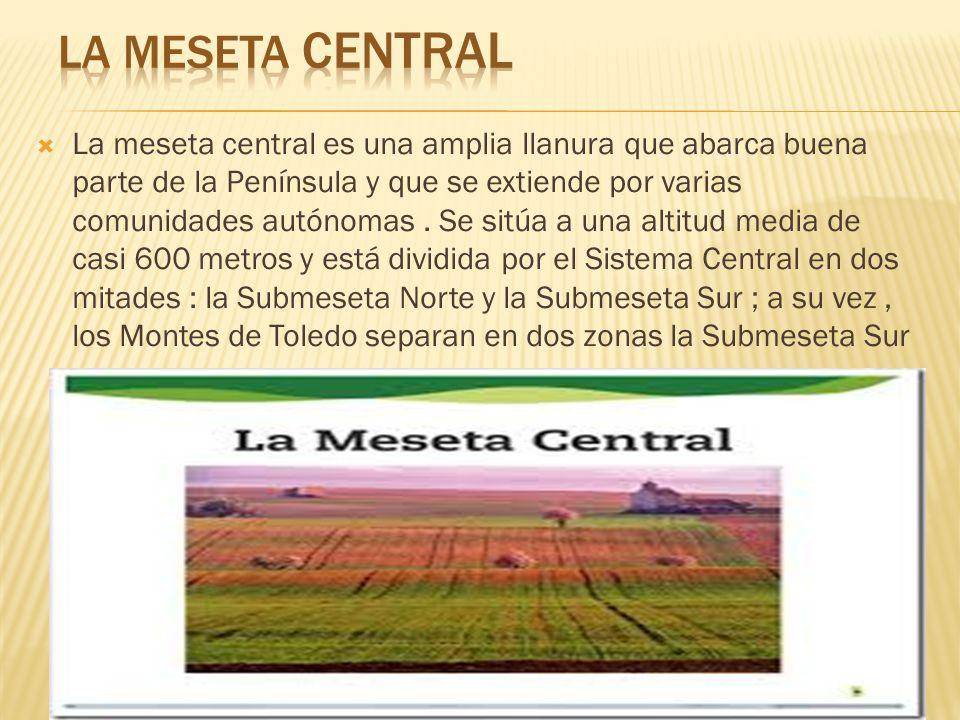 La meseta central es una amplia llanura que abarca buena parte de la Península y que se extiende por varias comunidades autónomas.