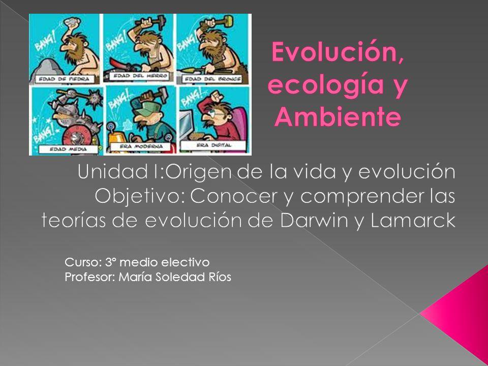 Curso: 3º medio electivo Profesor: María Soledad Ríos