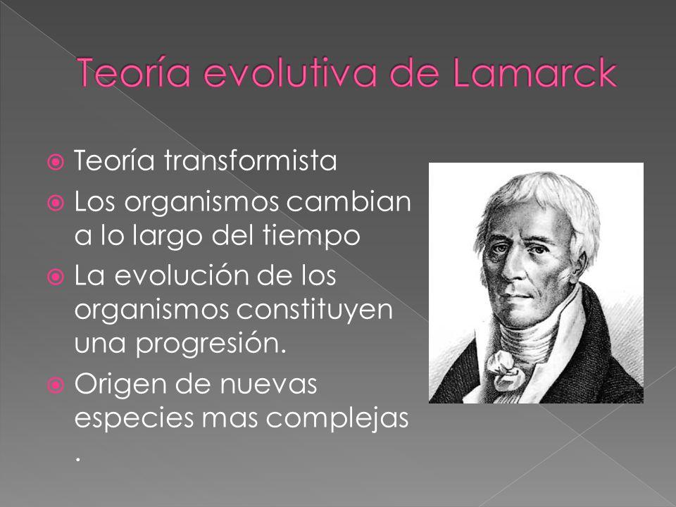 Teoría transformista Los organismos cambian a lo largo del tiempo La evolución de los organismos constituyen una progresión. Origen de nuevas especies