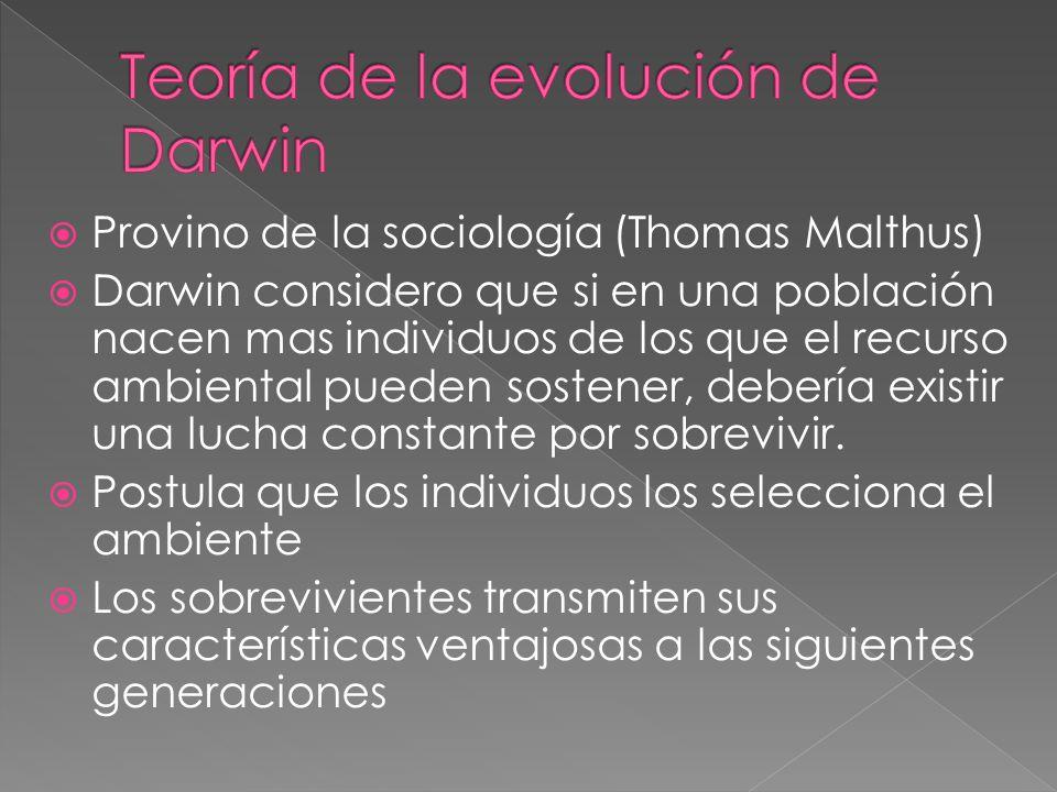 Provino de la sociología (Thomas Malthus) Darwin considero que si en una población nacen mas individuos de los que el recurso ambiental pueden sostene