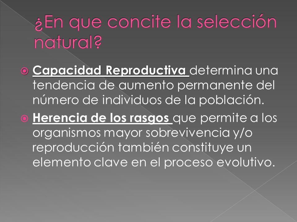 Capacidad Reproductiva Capacidad Reproductiva determina una tendencia de aumento permanente del número de individuos de la población. Herencia de los