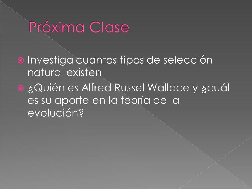 Investiga cuantos tipos de selección natural existen ¿Quién es Alfred Russel Wallace y ¿cuál es su aporte en la teoría de la evolución?